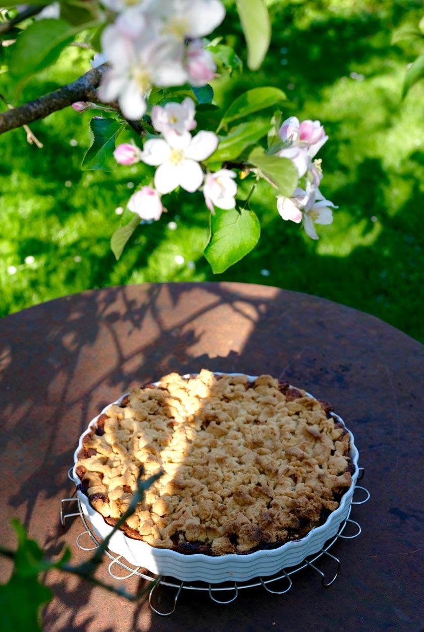 Apfelkuchen unter Apfelbaum