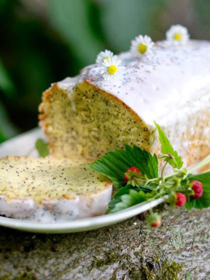 Leontine Hagoorts Liebling: Zitronenmohnkuchen