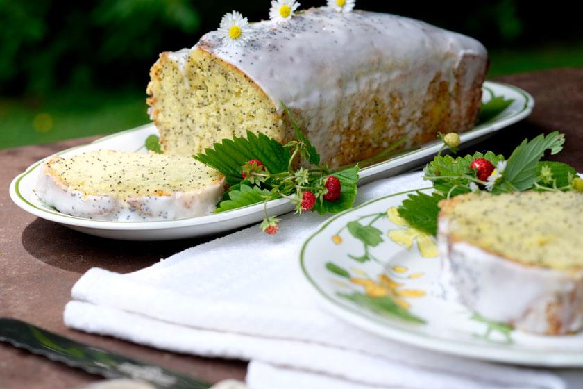 Zitronen-Mohnkuchen ganz und Stück