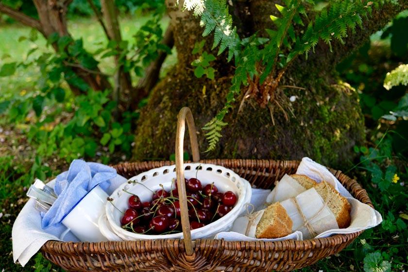 Picknickkorb mit Zucchinibrot und Kirschen