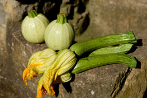 Zucchini mit Blüten