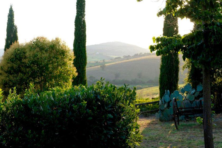 Toskana Landschaft
