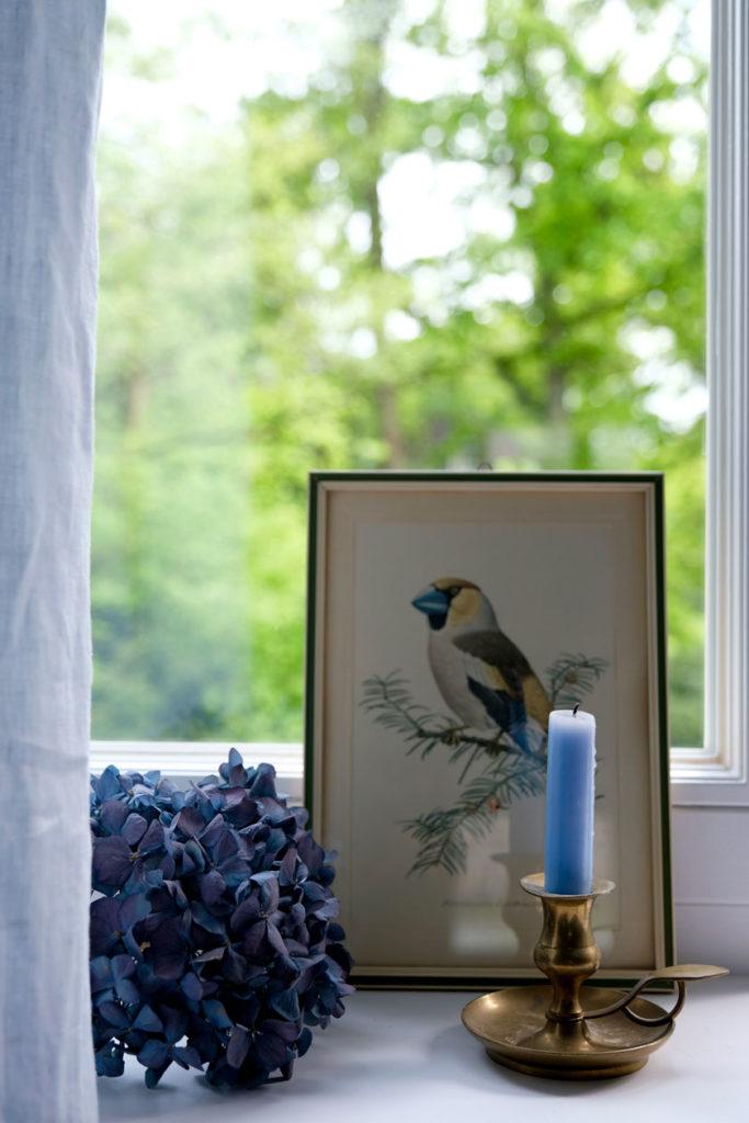 Farbinspiration - Blau, du Schöne. Wohnen mit Farbe: 3 Blautöne, die eine friedvolle ruhige und gar nicht langweilige Stimmung schaffen.