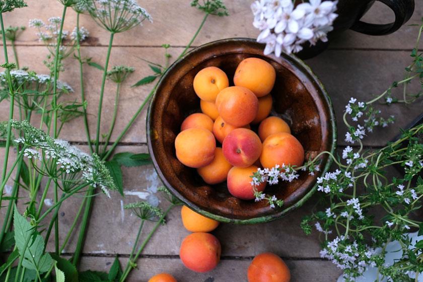 Früchte der Sonne: Aprikosen! Rezept für eine köstliche Karte mit Thymian