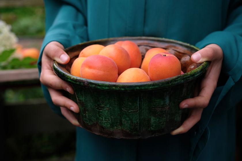 Saftige Aprikosen entfalten in einer Karte mit Thymian ihr einzigartiges Aroma