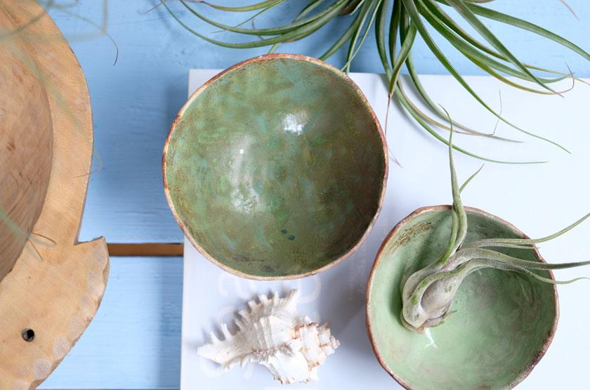 Tillandsien - bizarre Pflanzen inspirieren zu kunstvollen Halterungen