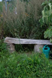 Miet-Gemüsegarten: Ruhiger Platz zum Ausruhen