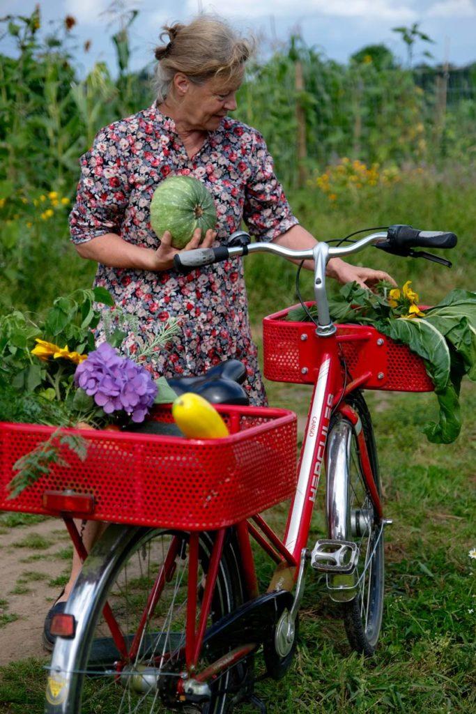 Zu Besuch in Sabine Bergmanns Gemüsegarten