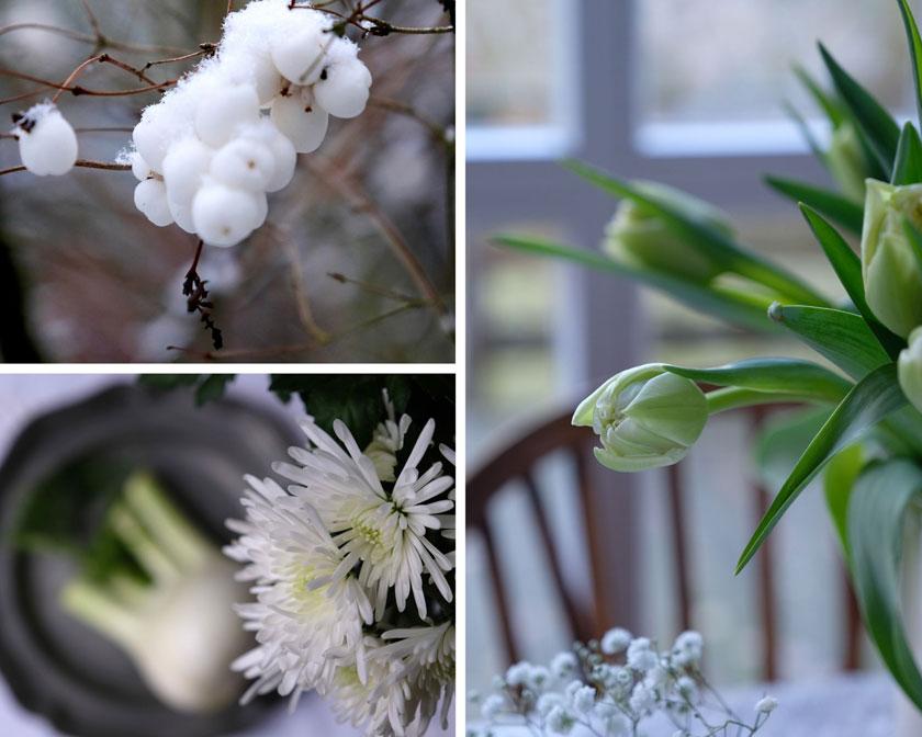 Winterdekoration mit weißen Blüten