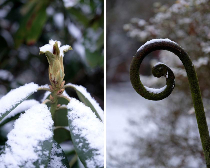 Weiß wie Schnee - Dekoration mit weißen Blumen