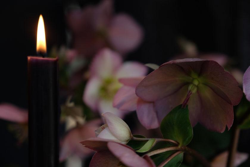 Im Licht der Kerzen…