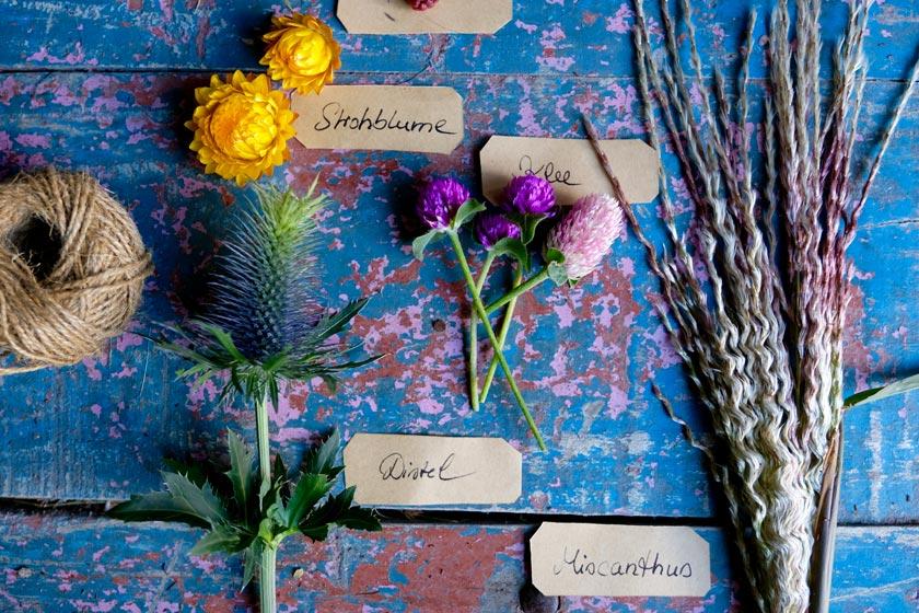 Trockenblumen für Septemberkränze