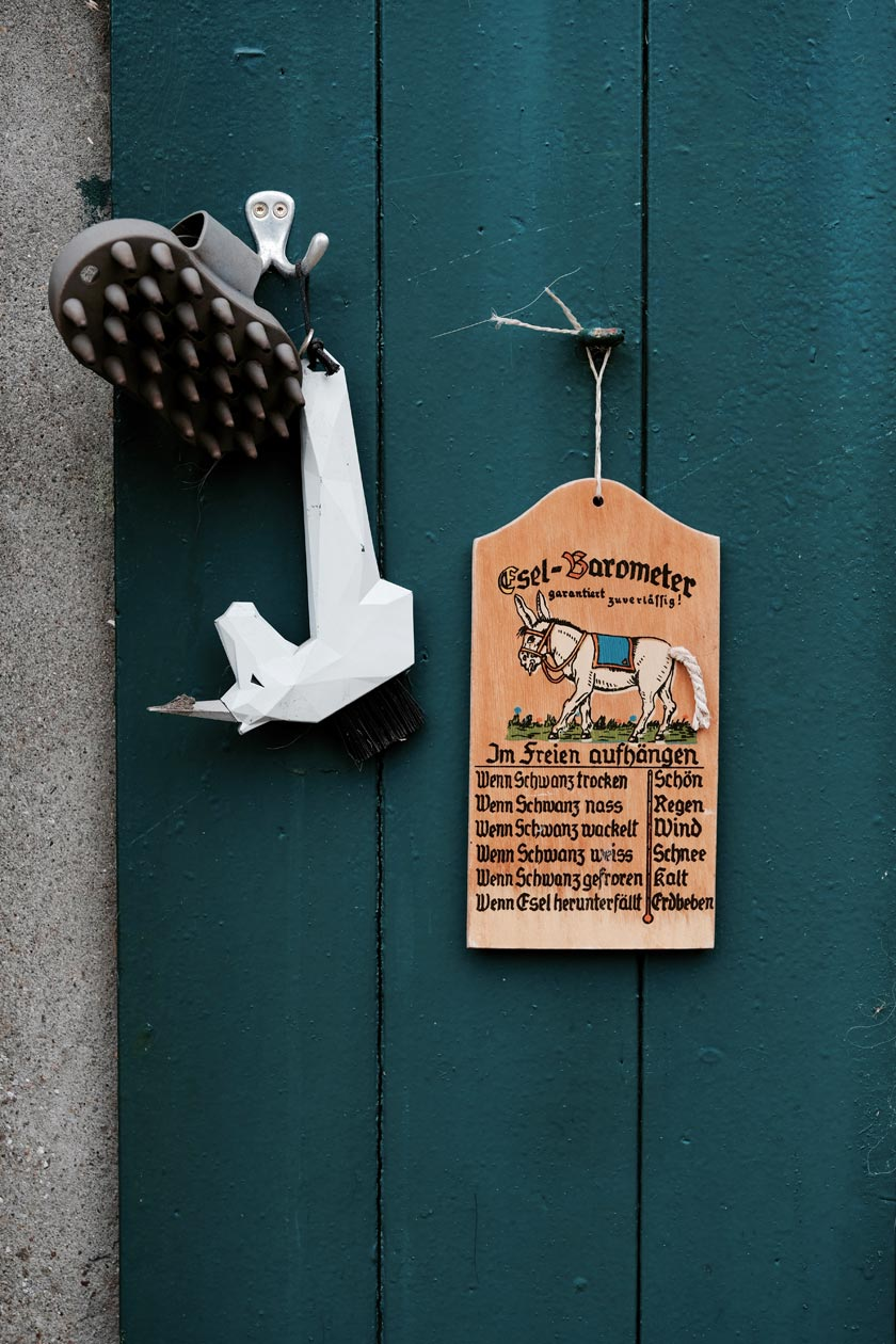 Des Esels Weg – die kleine Farm von Ricarda Holck
