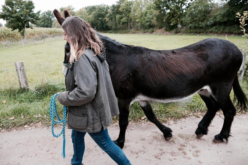 Des Esels Weg – Ricarda von Holck bietet Edelwanderungen an