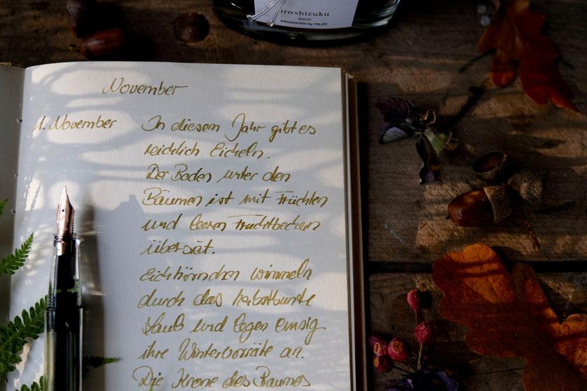 Lust auf Handschrift: Mit Tinte und Füllfederhalter