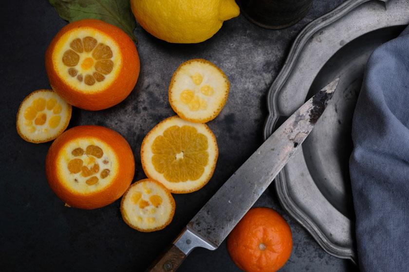 Orangen-Zitronenkuchen –so saftig und fruchtig frisch