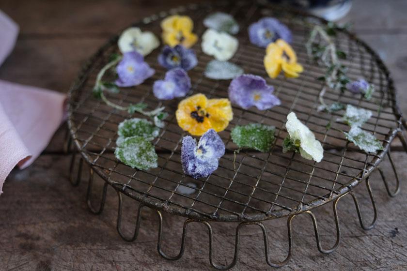 Rüblitorte mit kandierten Blüten und Kräutern