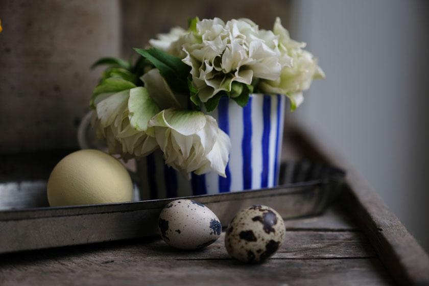 Frühlingstorte mit kandierten Blüten - ein Rezept